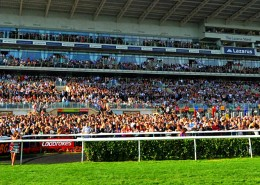 Doncaster Races Hospitality