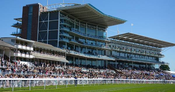 York Dante Meeting Hospitality Packages 2015 - Day Two Preview
