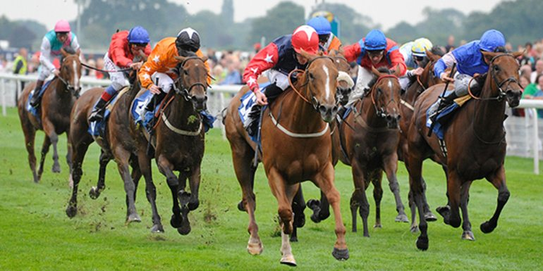 York Ebor Hospitality Packages