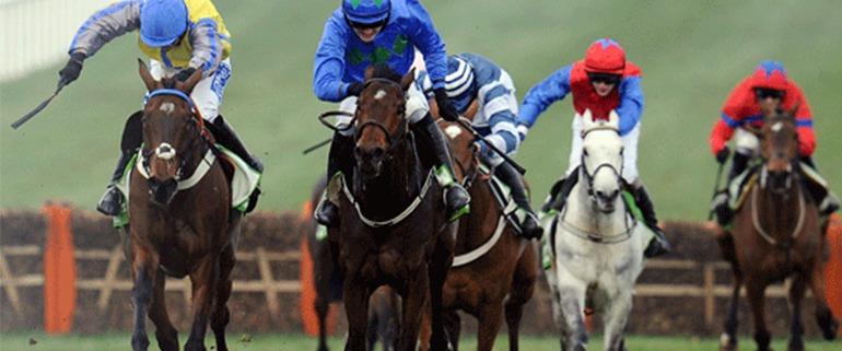 Horses running in the Cheltenham International Meeting