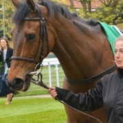 Will the King George prove to be a crucial Cheltenham Gold Cup trial?