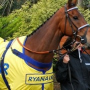 Can Cue Card win the Cheltenham Gold Cup in 2016?