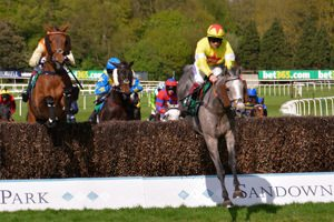 Sandown Hospitality - Bet365 Jump Finale Day