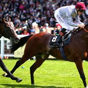 Royal Ascot Racing Action