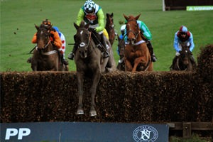 Newbury Racecourse - Hennessy Gold Cup Day - Hospitality Packages