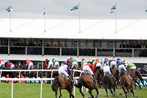 Horses running at Aintree Racecourse on Grand National Day