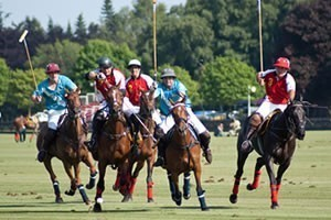 International Day Hospitality - Polo Corporate Packages - Guards Club