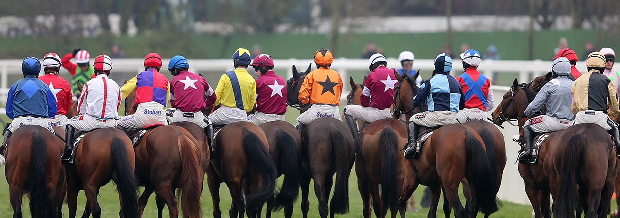 Cheltenham Racecourse Runners