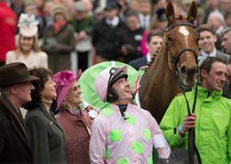 Cheltenham International Meeting - Hospitality Packages - Cheltenham Racecourse