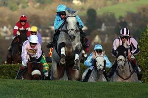 Cheltenham Hospitality - The November Meeting - Cheltenham Racecourse