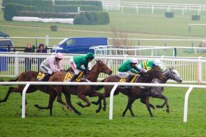Cheltenham Hospitality - Private Box - Cheltenham Racecourse