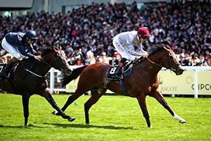 Royal Ascot Corporate Hospitality Packages - Tuesday 20th June 2017 - Ascot Racecourse
