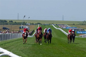 The Final Meeting - Newmarket Racecourse - Corporate Hospitality