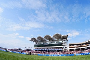 Newmarket Racecourse - Corporate Hospitality Packages and VIP tickets - Horse Racing