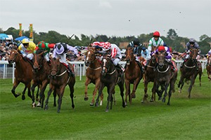 York Dante Festival Friday - Corporate Hospitality Packages - York Racecourse