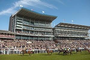 York Dante Festival - Corporate Hospitality Packages - York Racecourse
