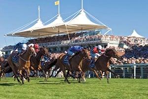 Qatar Goodwood Festival Corporate Hospitality Packages - Glorious Goodwood Saturday - Goodwood Racecourse