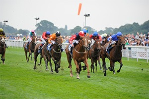 York Ebor Festival - Nunthorpe Day Corporate Hospitality Packages