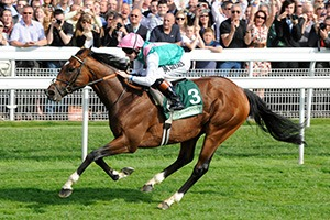 York Ebor Festival - Juddmonte International Day Corporate Hospitality Packages