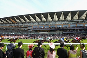 Royal Ascot Corporate Hospitality Packages - Friday 23rd June 2017 - Ascot Racecourse