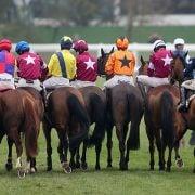Cheltenham Racecourse Runners and Riders