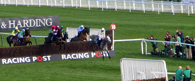 Cheltenham Festival Racing Action