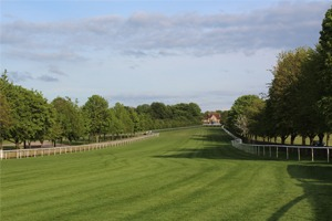 The July Festival - Newmarket Racecourse - Corporate Hospitality Packages & VIP Tickets