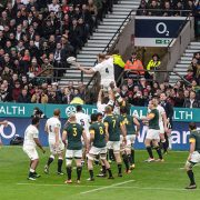 England v South Africa Rugby Players