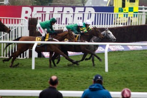 Cheltenham New Years Day Hospitality Packages