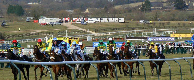 Cheltenham Festival Runners and Riders