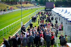 Course Facing Pavilion - Chester May Festival Reviews