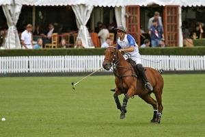 The Duke's Pavilion – Guards Club Polo Hospitality Reviews