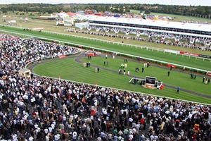 Lazarus Suite - Eventmasters Doncaster Raceday Hospitality Reviews