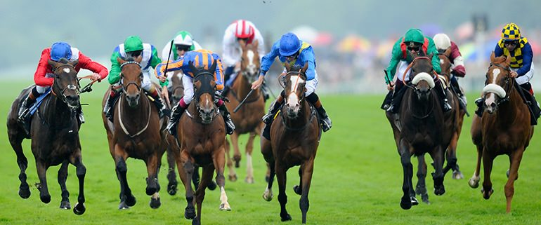 Royal Ascot Horses Racing