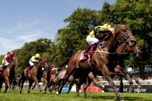Newmarket Summer Meetings Racing - Horse Racing Hospitality
