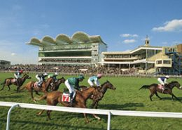 Newmarket Racecourse - Spring Hospitality