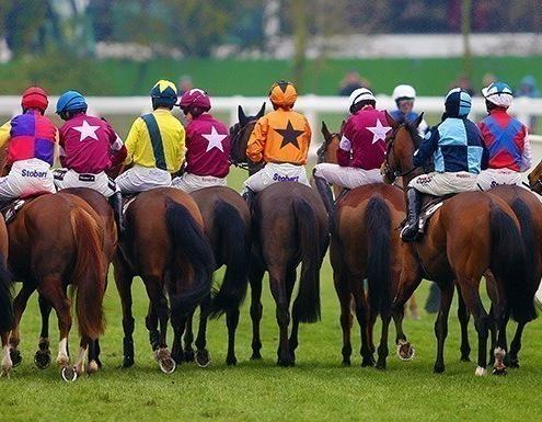 Jockeys and Horses at Cheltenham Racecourse