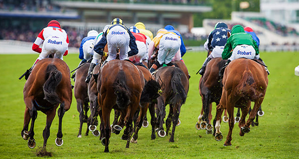 Royal Ascot Runners and Riders