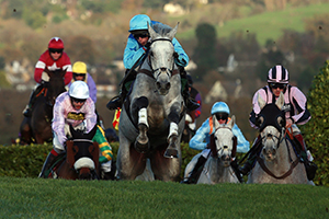 Cheltenham National Hunt Racing
