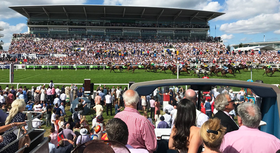 Epsom Racecourse – Open Top Bus Experience View