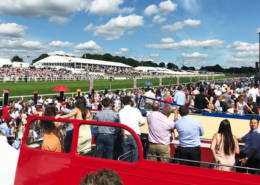 views from the open top bus at Epsom