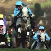 Horses Racing at Cheltenham