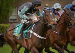 Altior Horse Racing