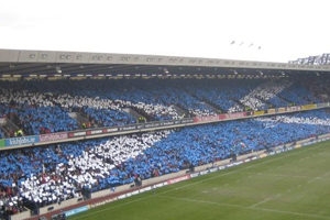Scottish Fans at Murrayfield