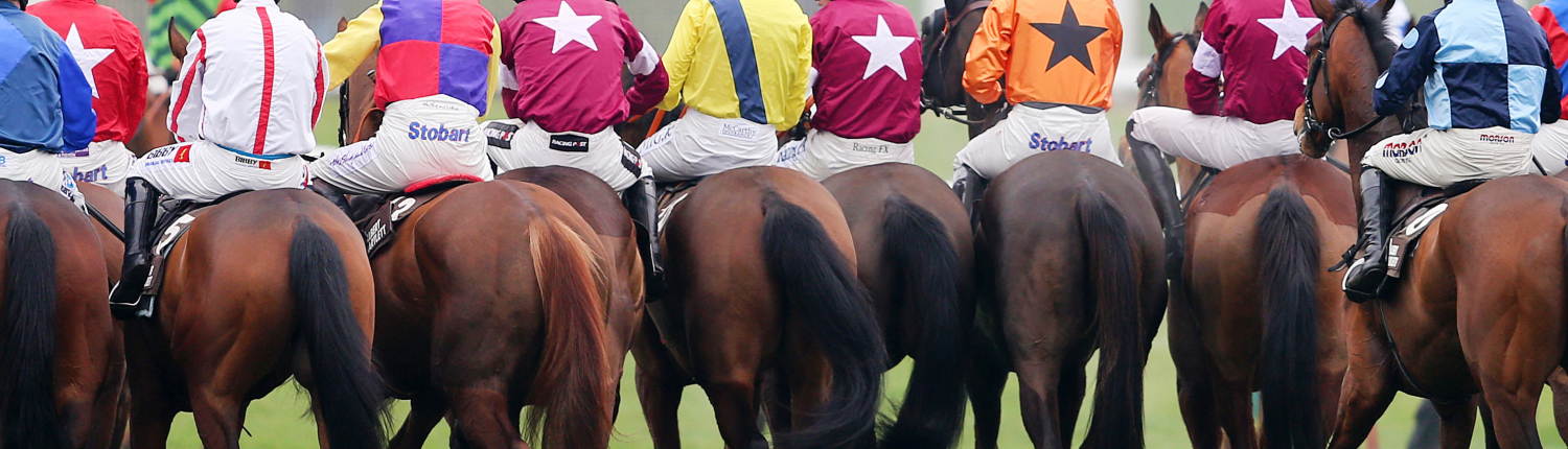 Cheltenham Festival Runners and Riders Lining Up