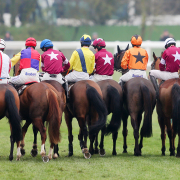 Cheltenham Festival Runners and Riders
