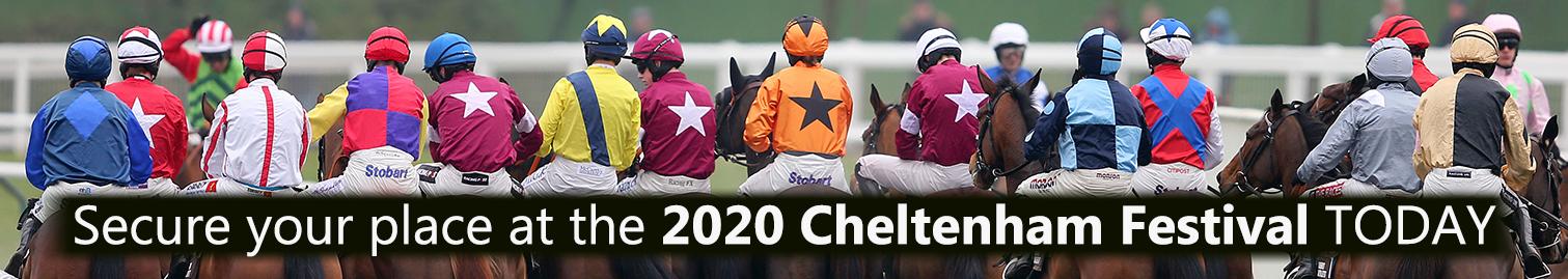 Cheltenham Festival 2020 - Cheltenham Horses