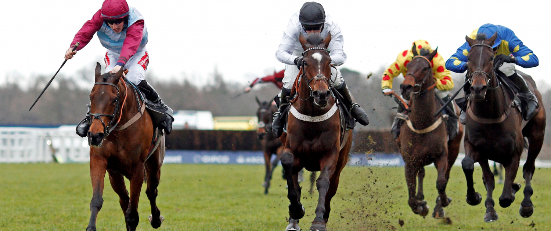 Horses Racing to Glory