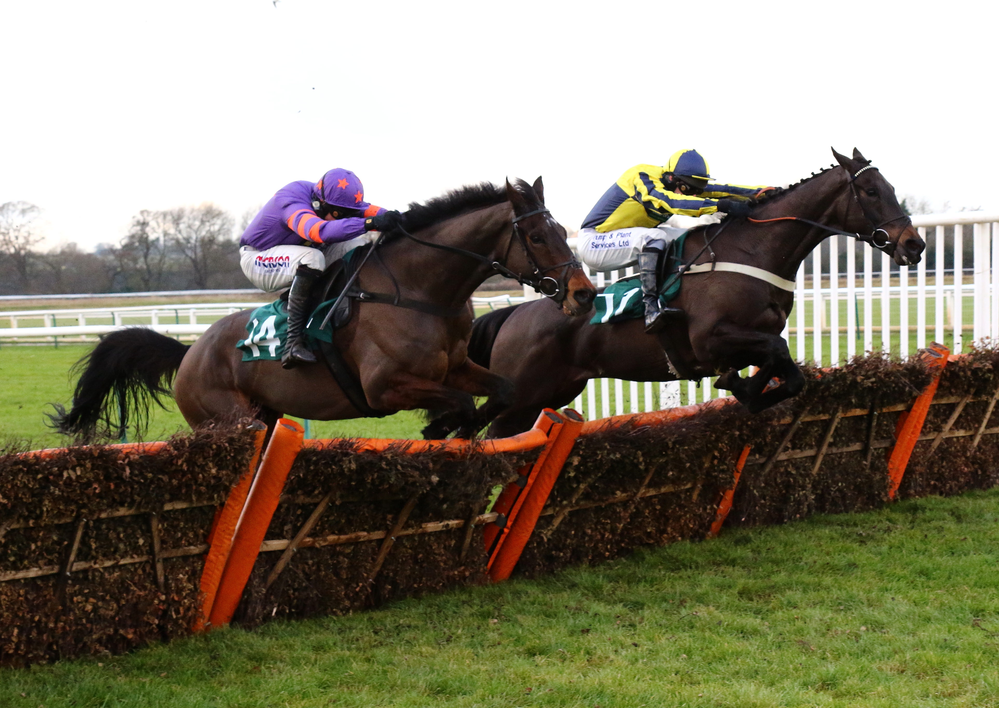 Warwick Races - News