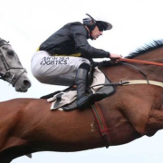 Cheltenham Festival Potential Suprise Return for Seeyouatmidnight